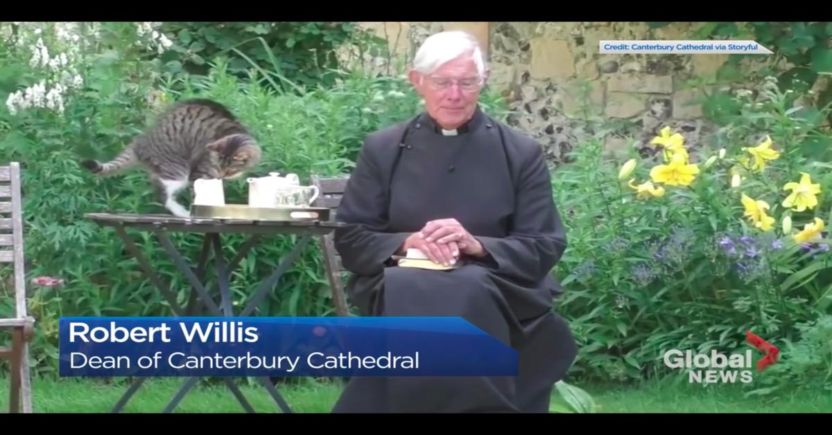 reverendo Willis recita sermone e gatto beve il latte