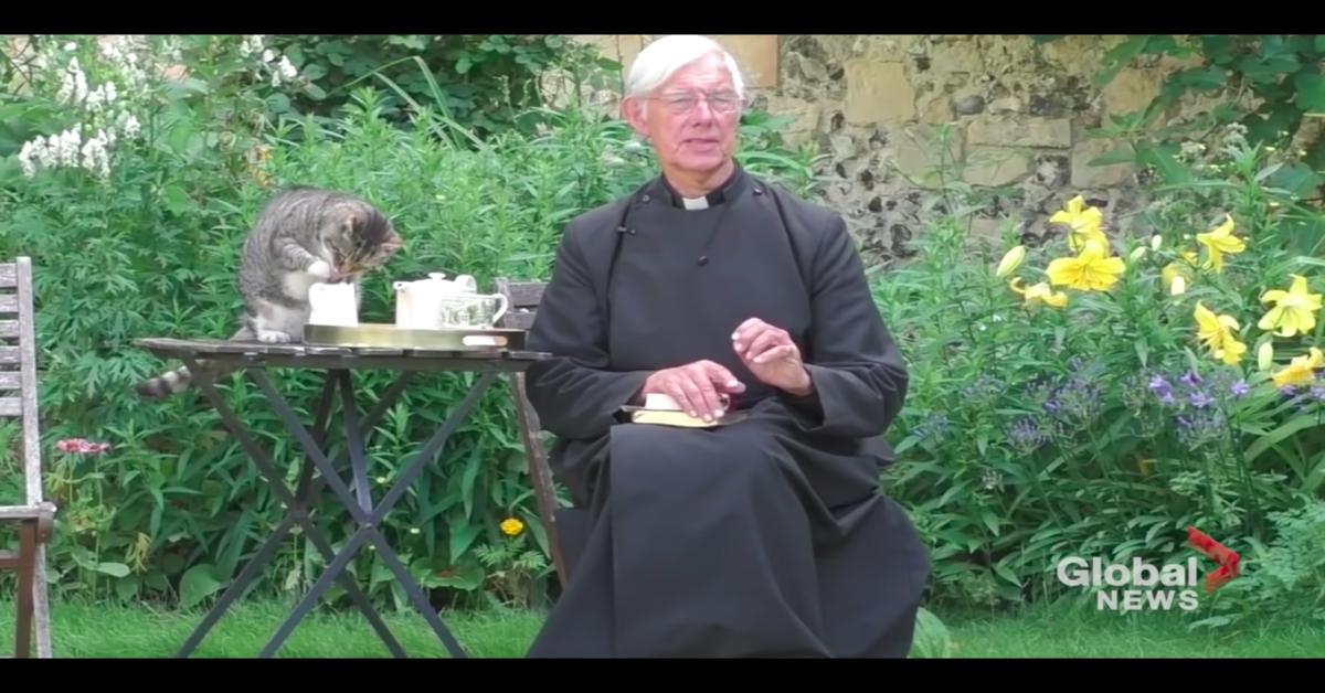 gatto Tiger beve il latte, mentre il prete recita il sermone