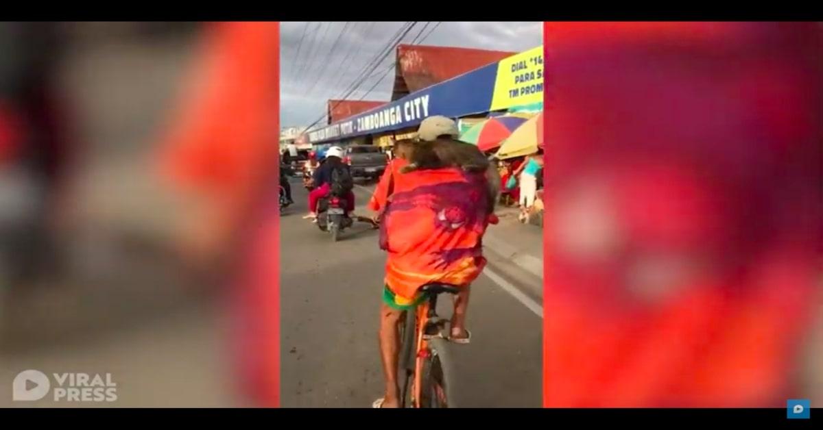 gatto in bicicletta sulle spalle di un anziano