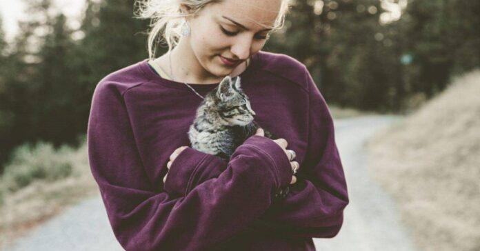 gattino tra le braccia di ragazza