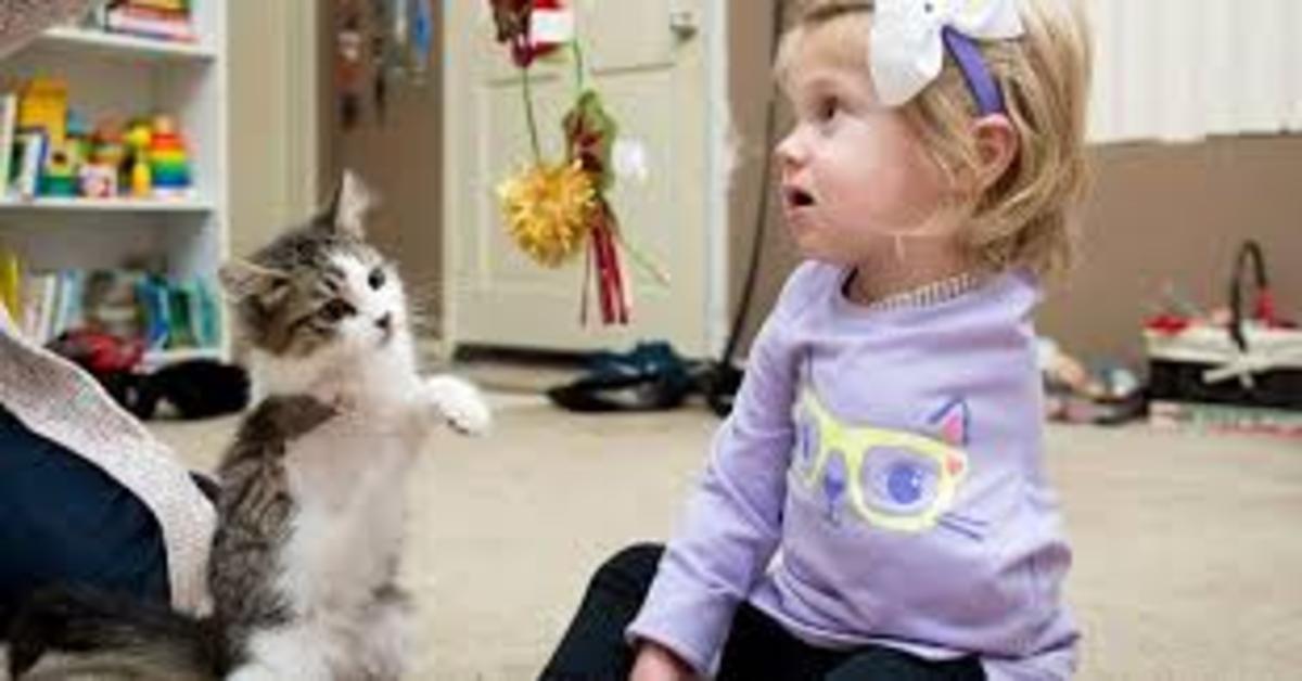 Scarlette gioca con Doc