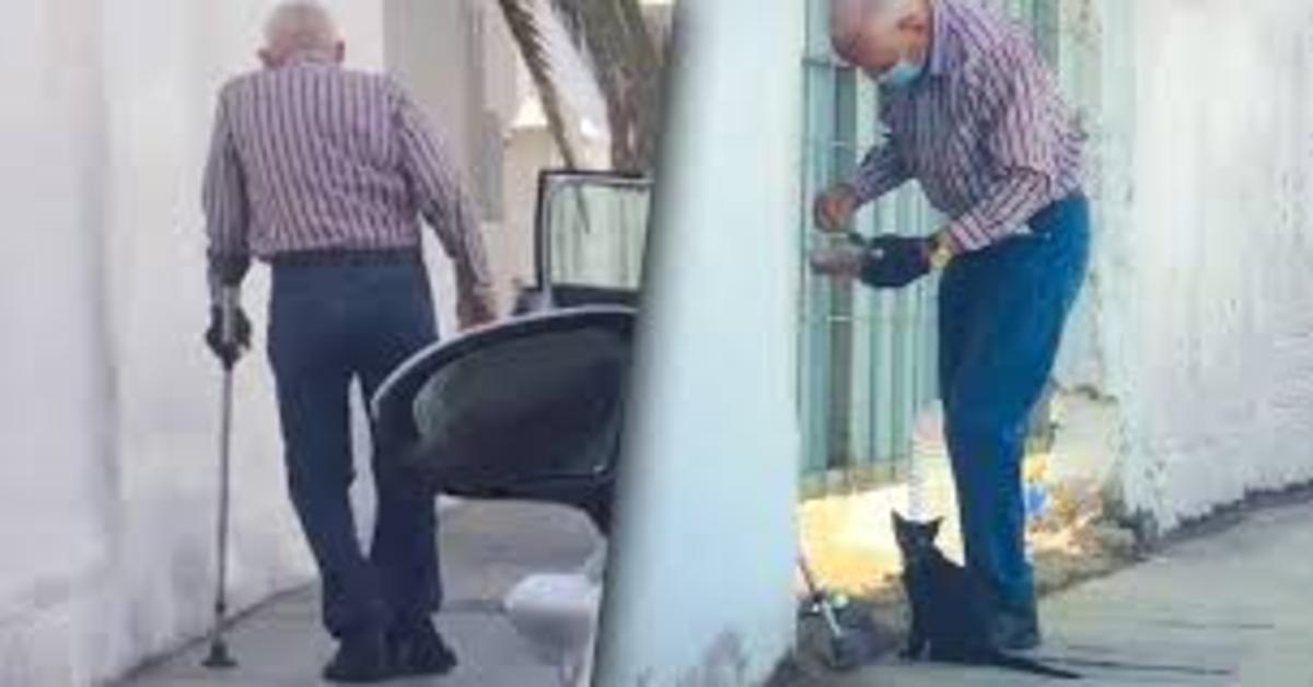 anziano si prende cura di un gattino randagio