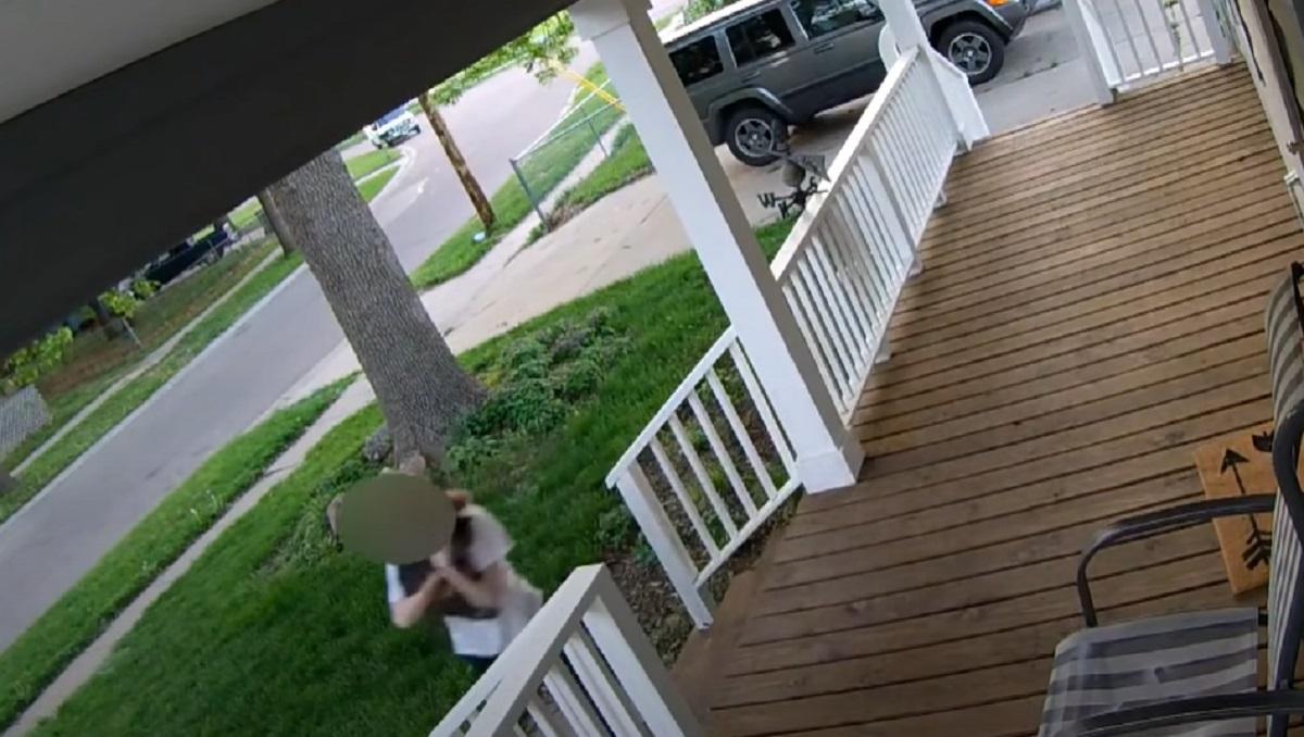 rapito gatto scappa