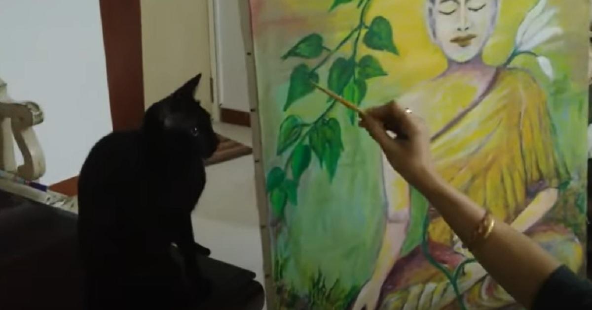 micio dispetti dipingere