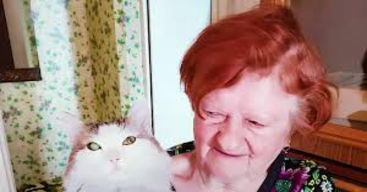 Dina e Liosha, gatto che l'ha salvata