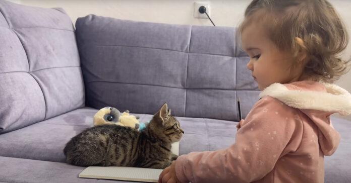 Gattino con una bambina