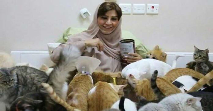 Maryam insieme ai suoi gatti