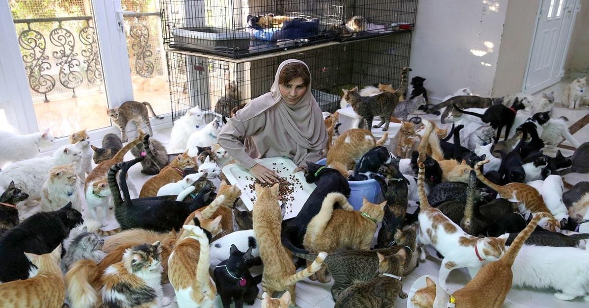 Donna dell'Oman insieme ai suoi 500 gatti