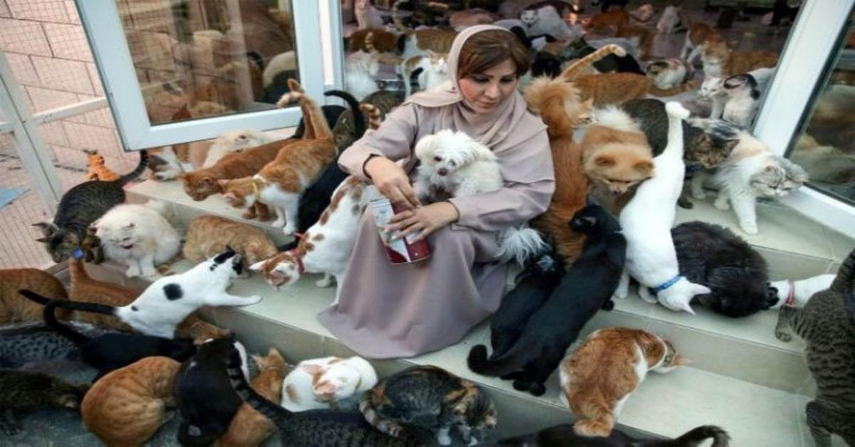 Maryam insieme ai suoi cani e gatti