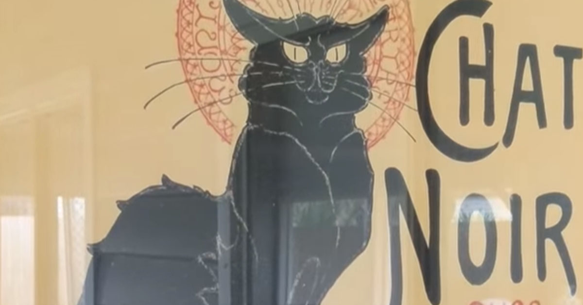 Manifesto chat noir