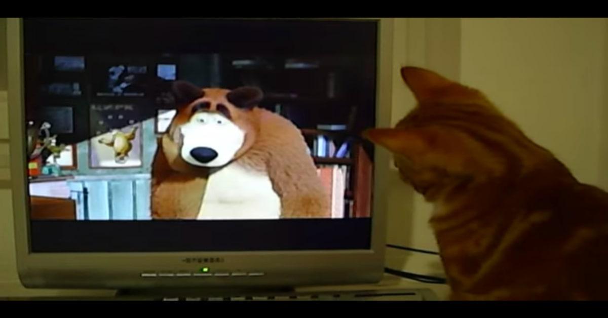 Al gatto piace Masha e Orso