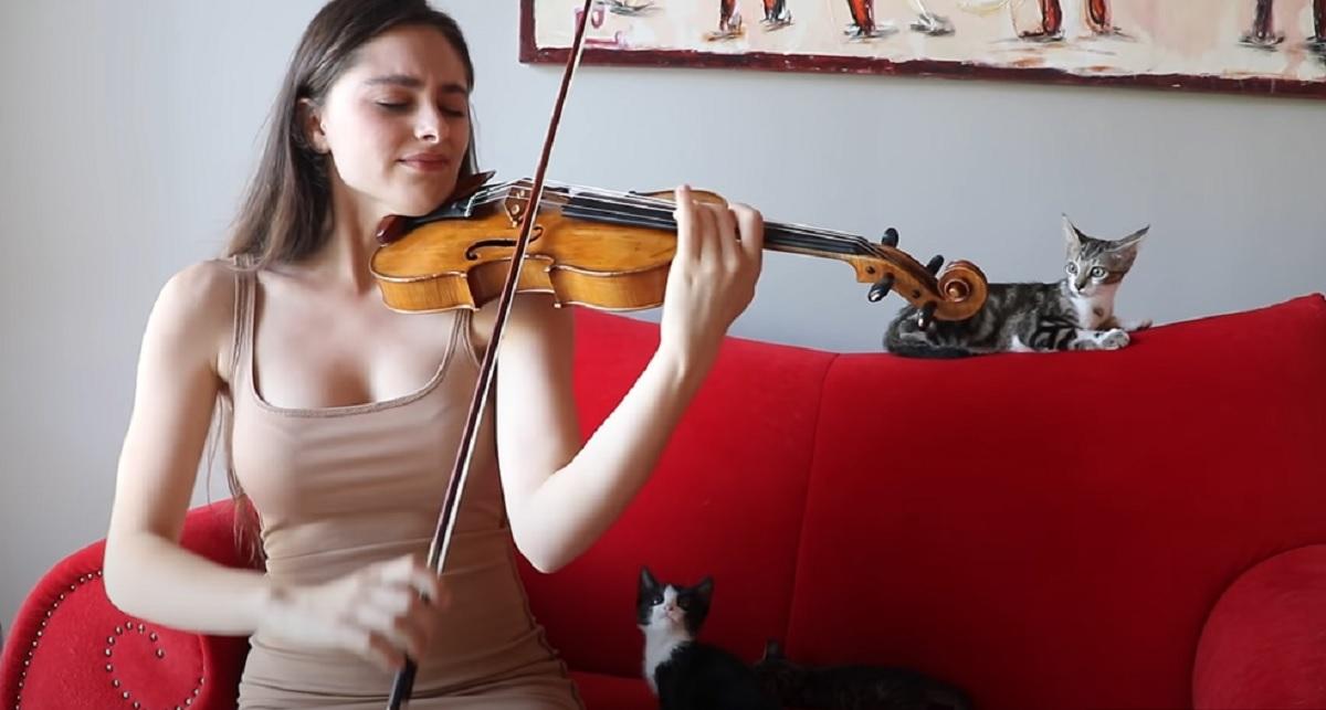 suono violino mamma