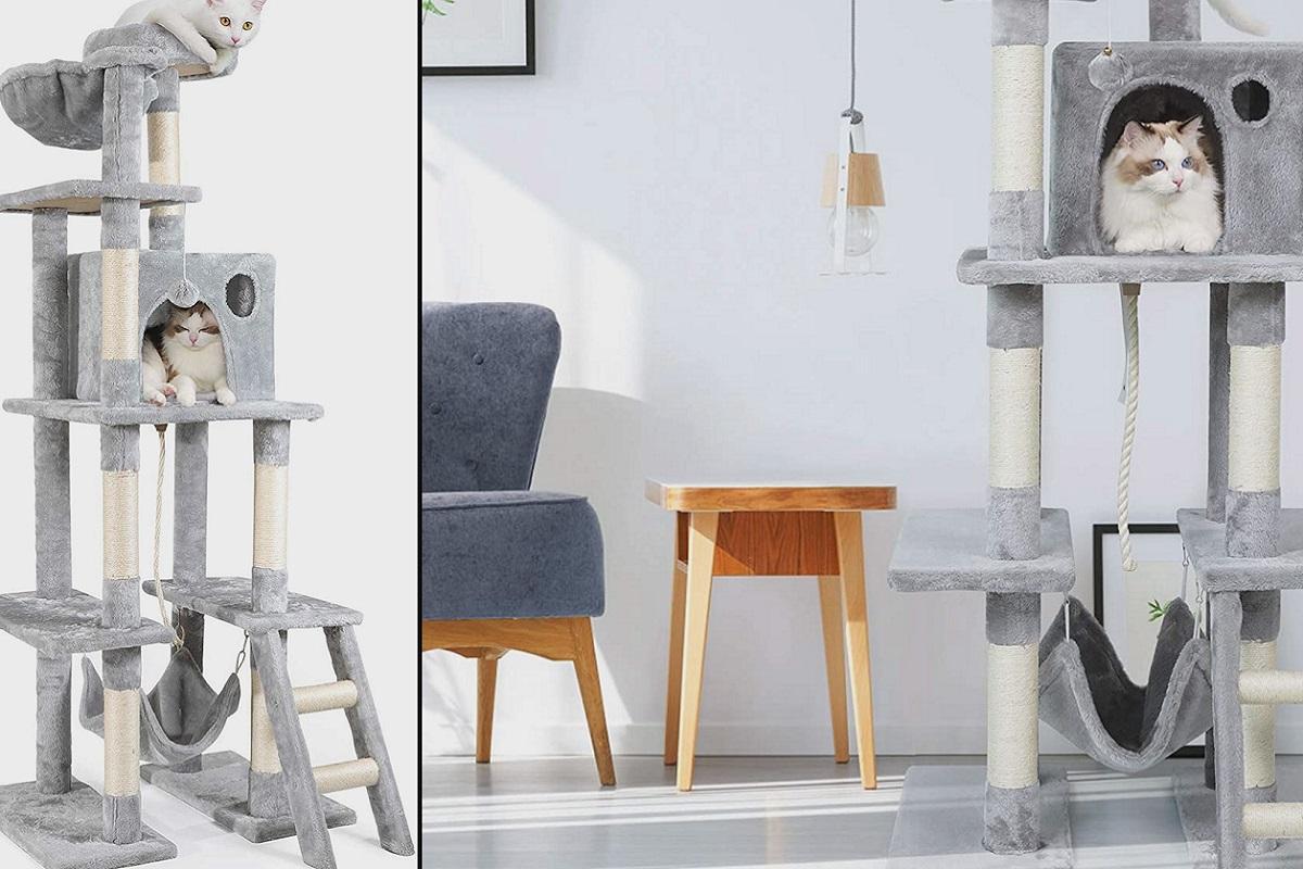 torre per gatti