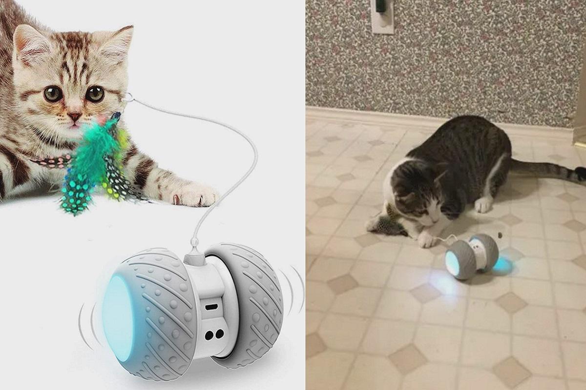 gioco robotico per gatti
