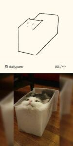 10 disegni di gatti-evidenza