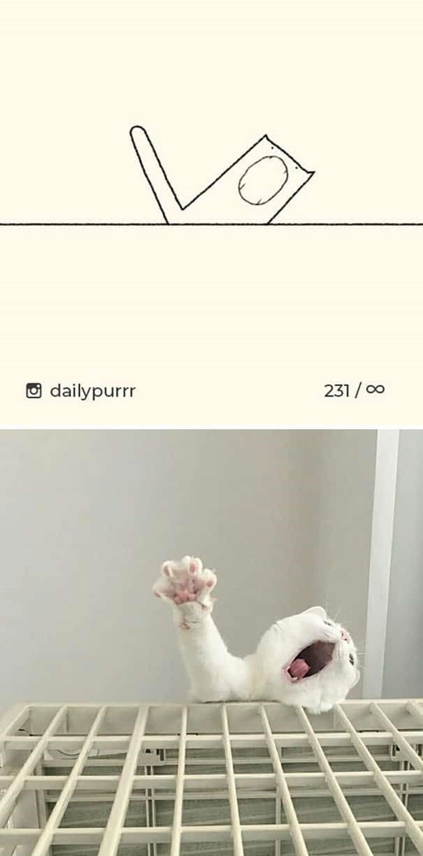 10 disegni di gatti-gatto che sta cadendo