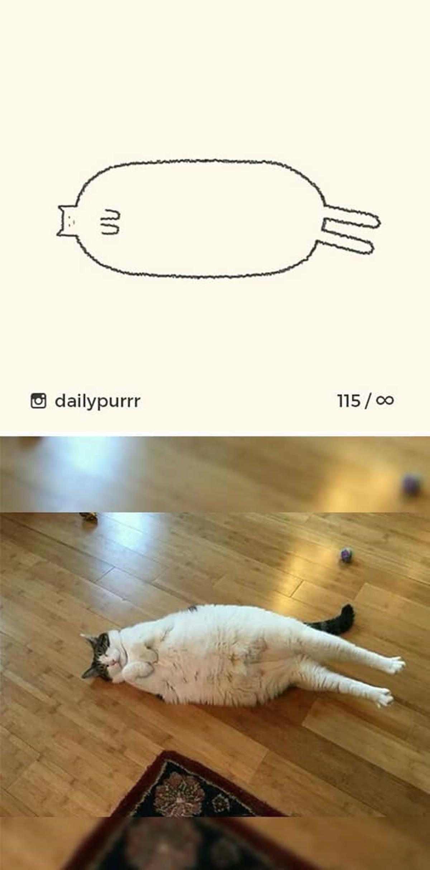 10 disegni di gatti-gatto che si è sdraiato