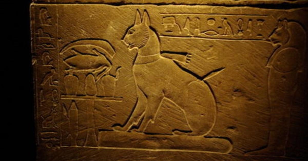 10 gatti famosi nella storia-Ta miu