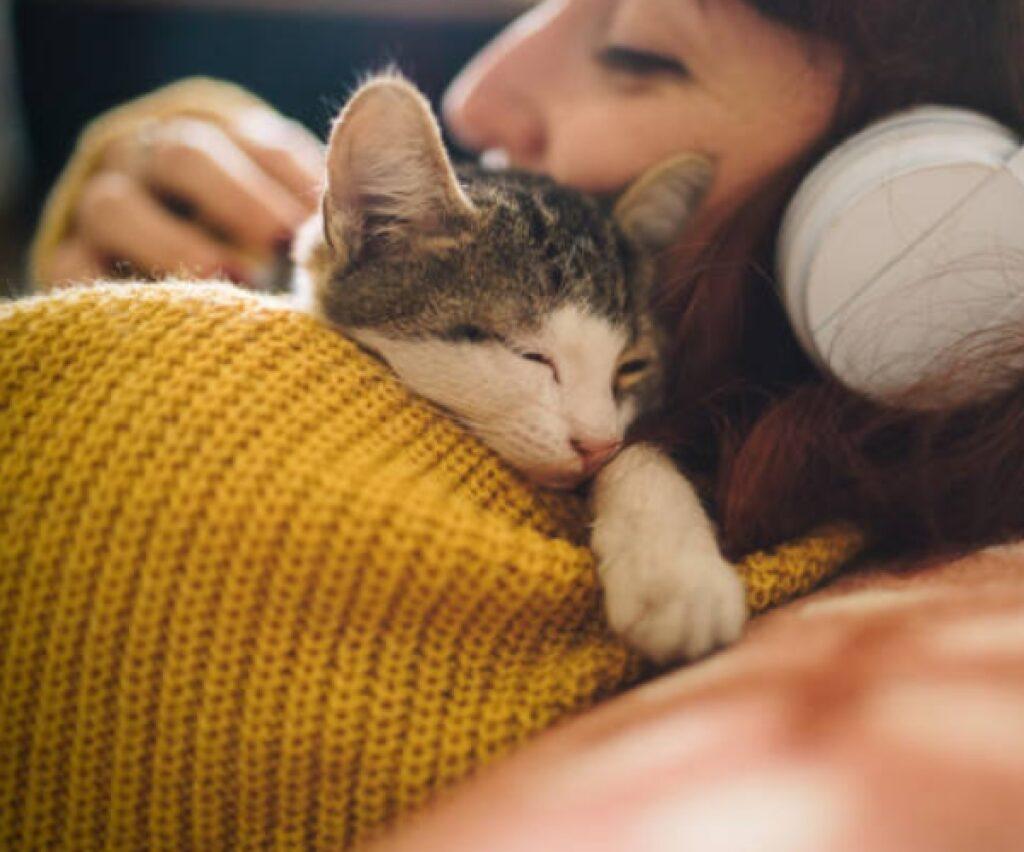 toby gattino europeo fra i vestiti
