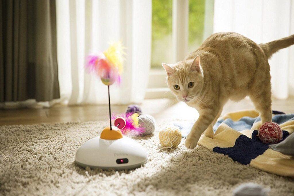 gattino con gioco a forma di piumino