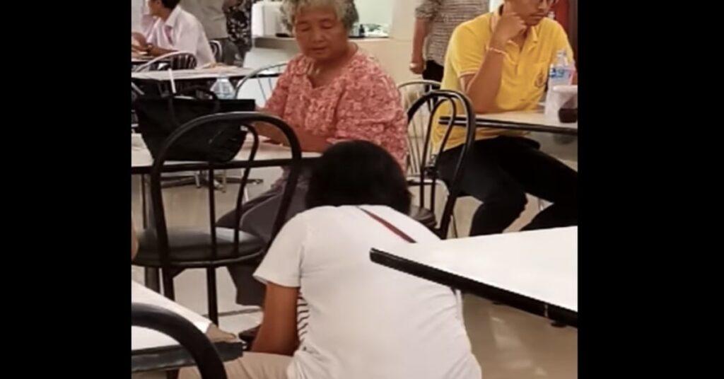 gattino chiede cibo e una donna glie lo offre