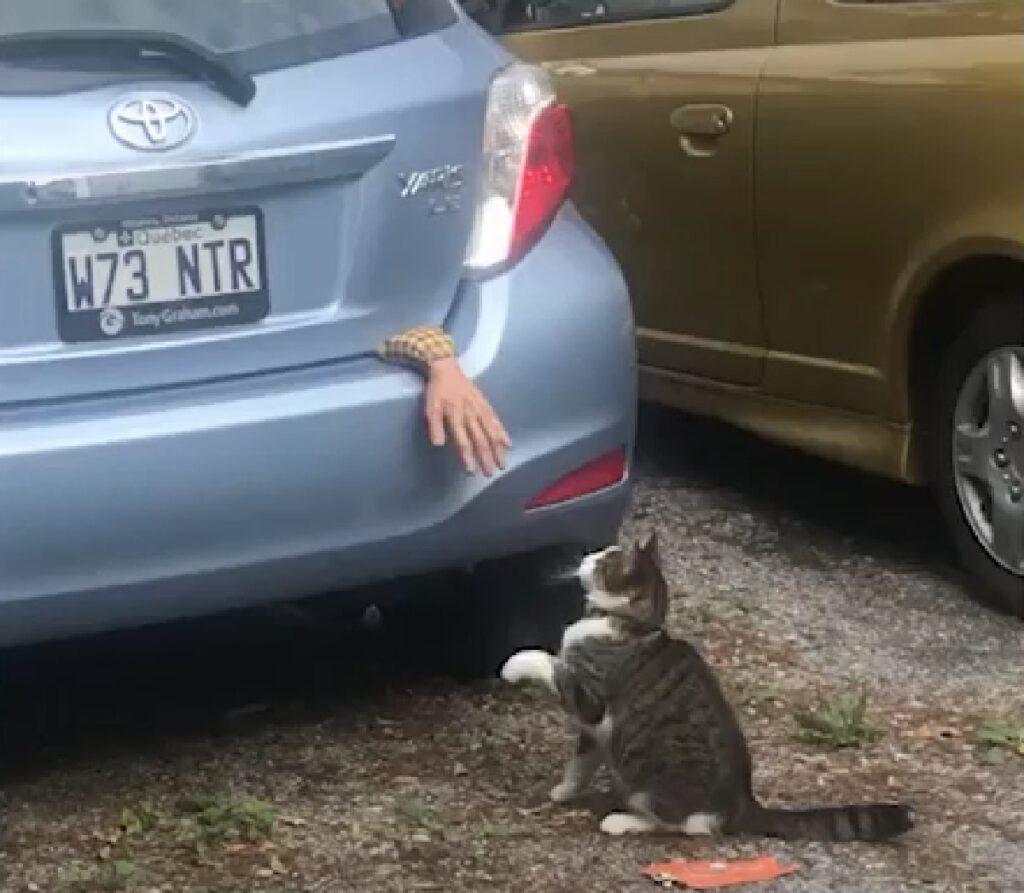 booth gattino soriano corinne laporte