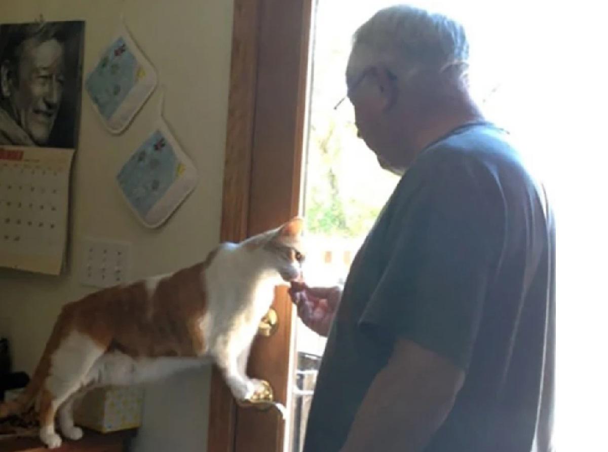 nonno e il gattino
