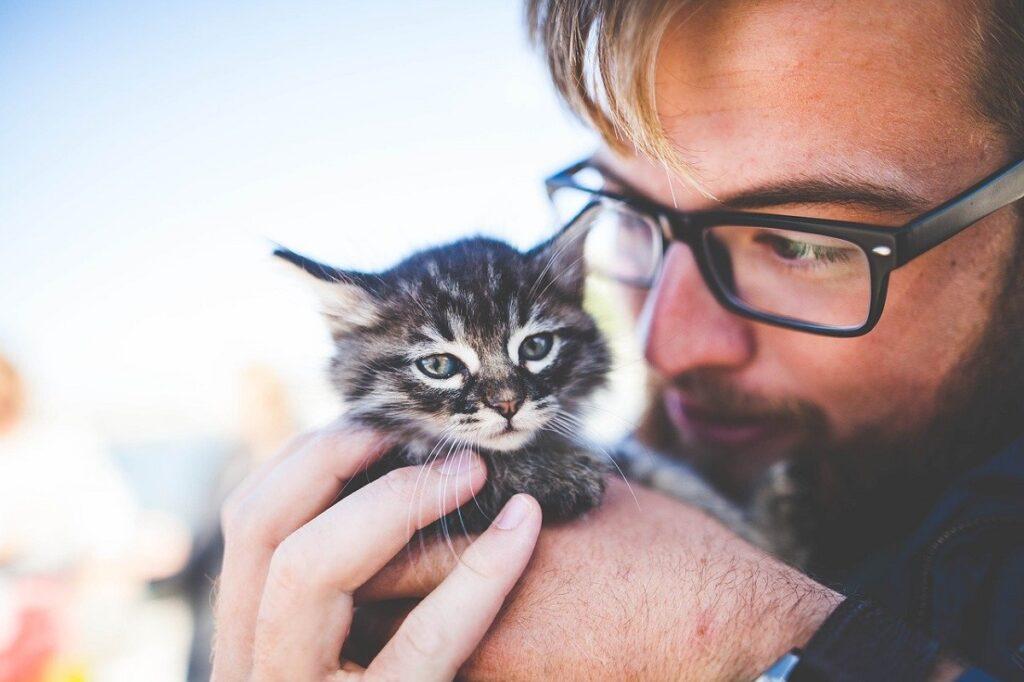 gatto ragazzo occhiali