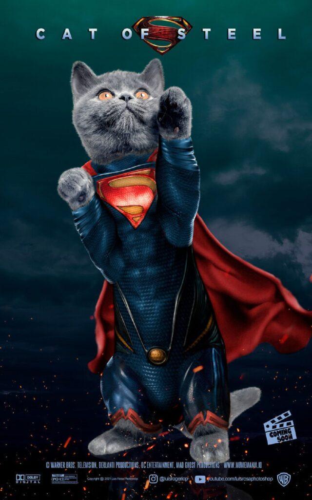 gatto eroe mantello