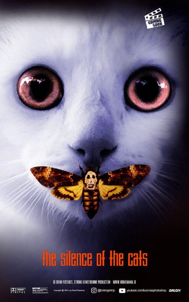 gatto farfalla faccia