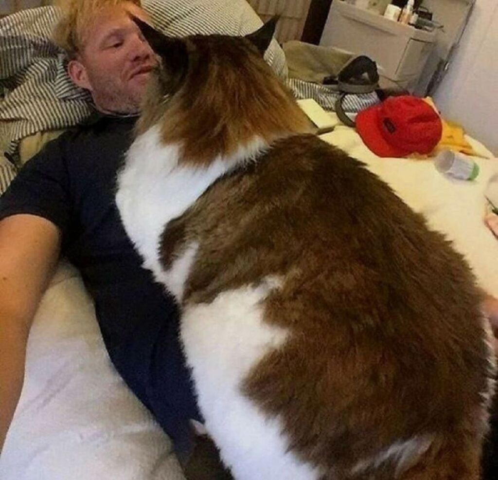 micio grande papà
