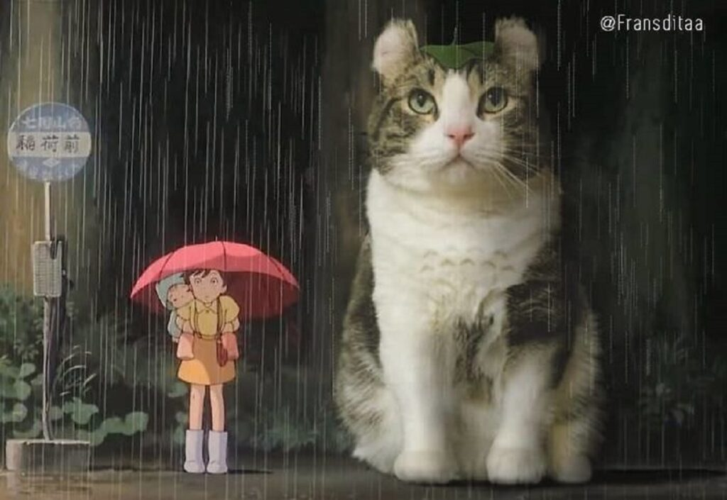 gatto ombrello acqua