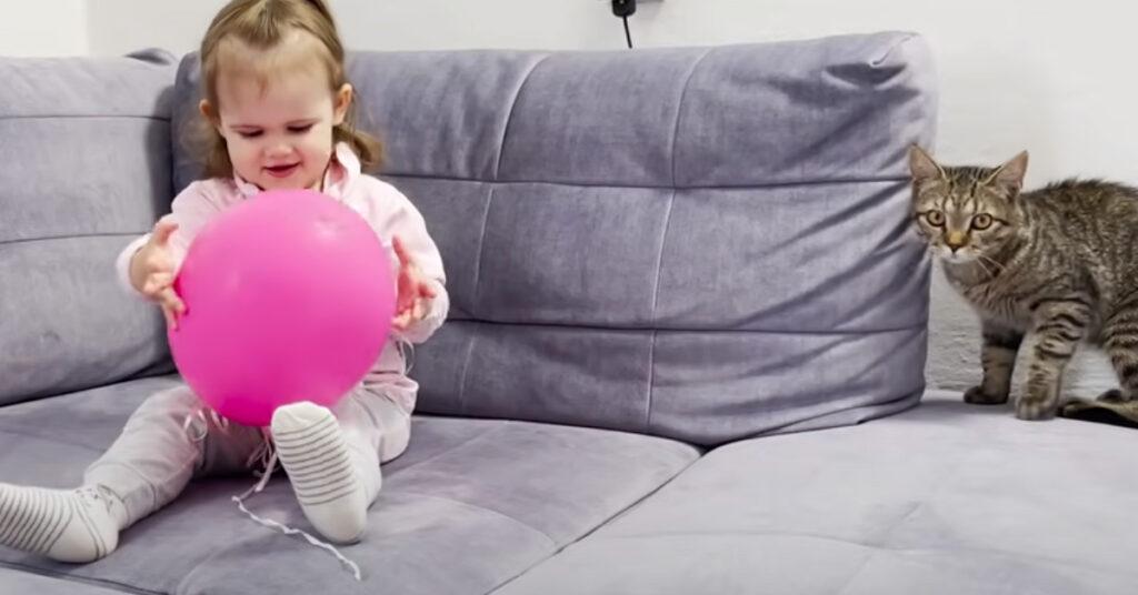 Gatto che gioca con un palloncino insieme a una bambina