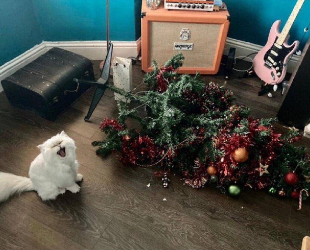 gatto bianco rovescia albero di natale