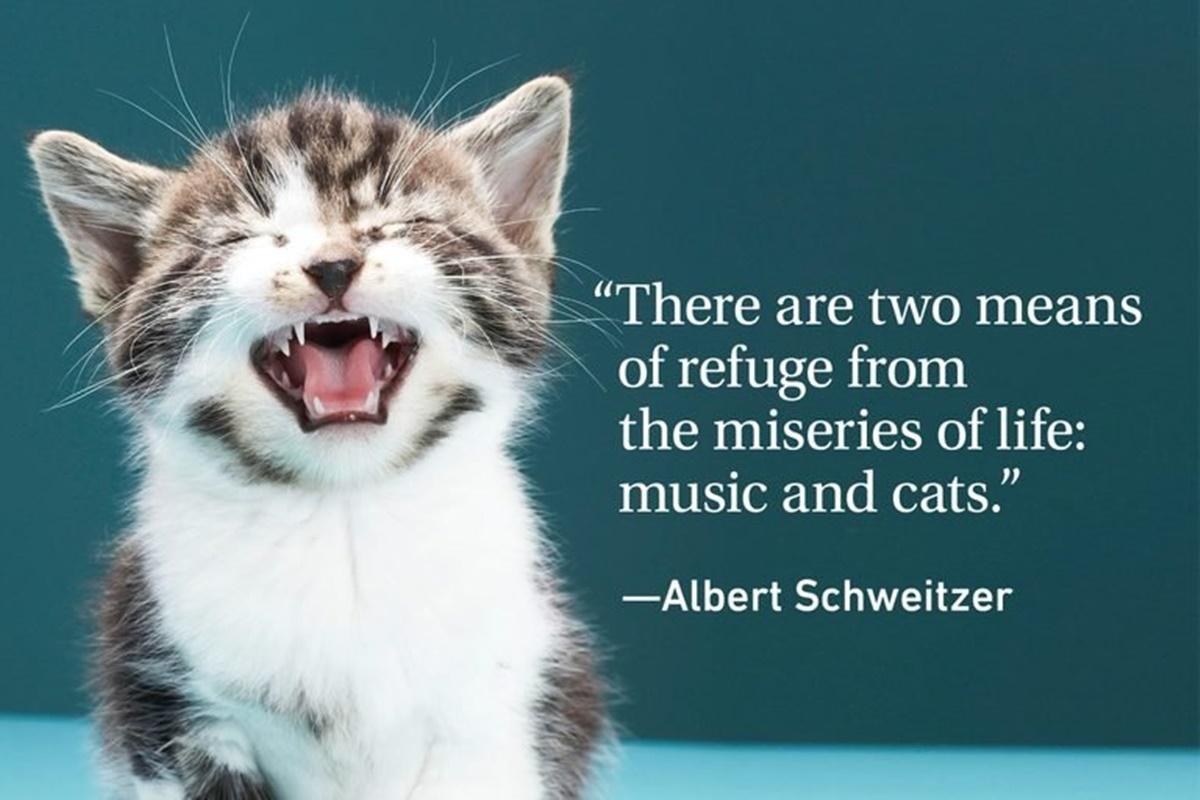 A.S. gatti e musica