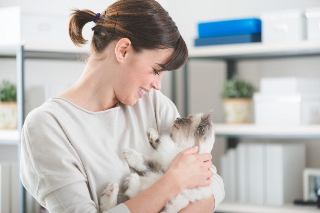gatto in braccio