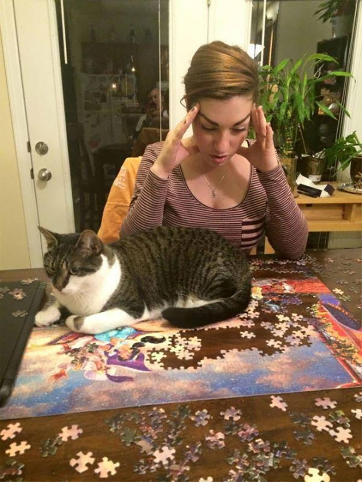 gatto si sdraia su puzzle