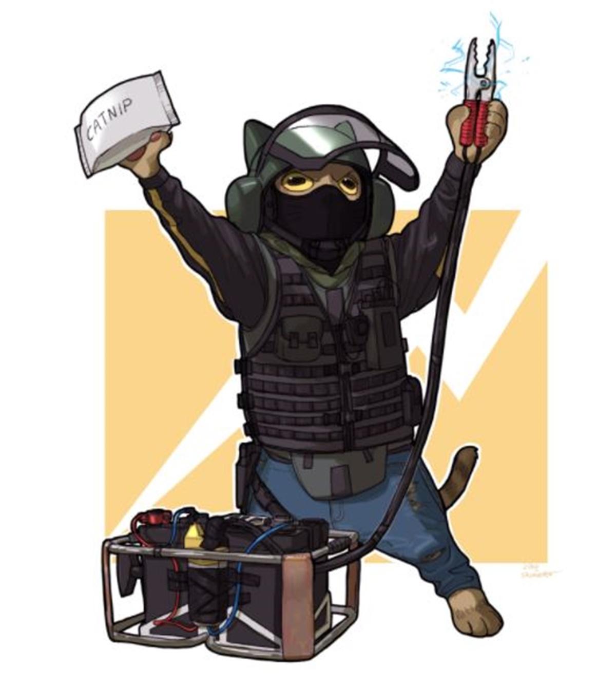 gatto bandit