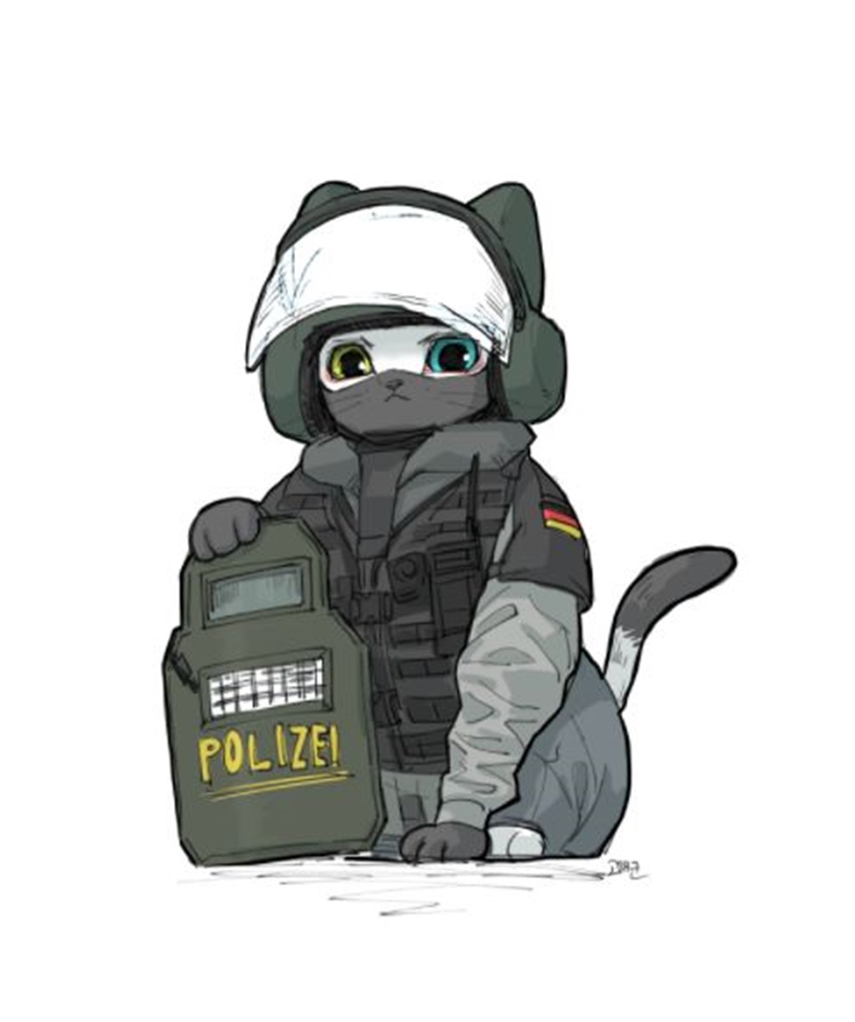 gatto blitz