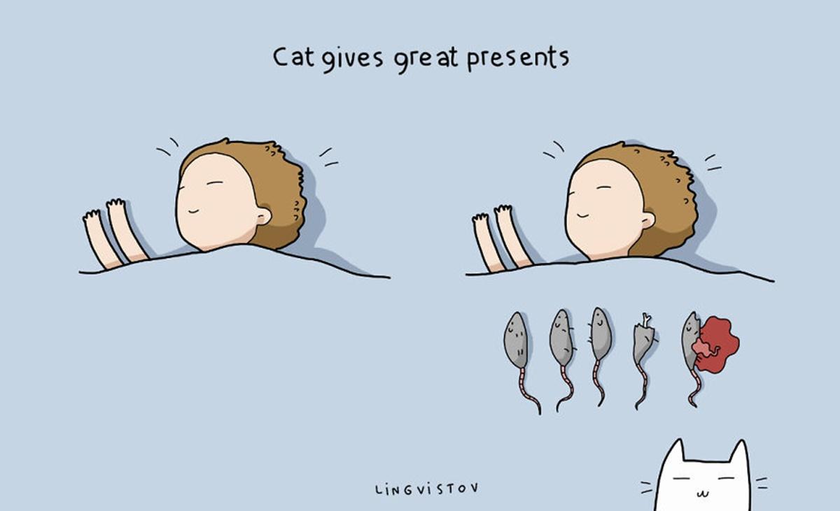 gatto regali