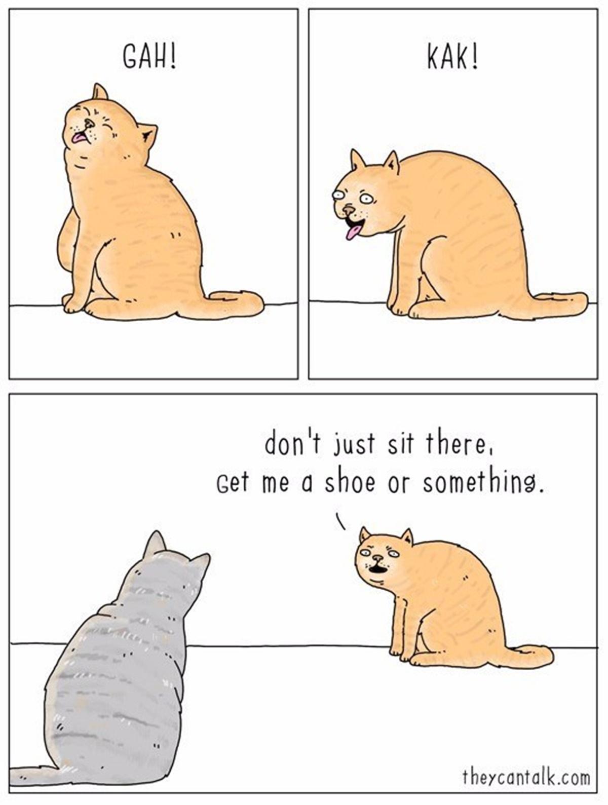 gatto palla di pelo