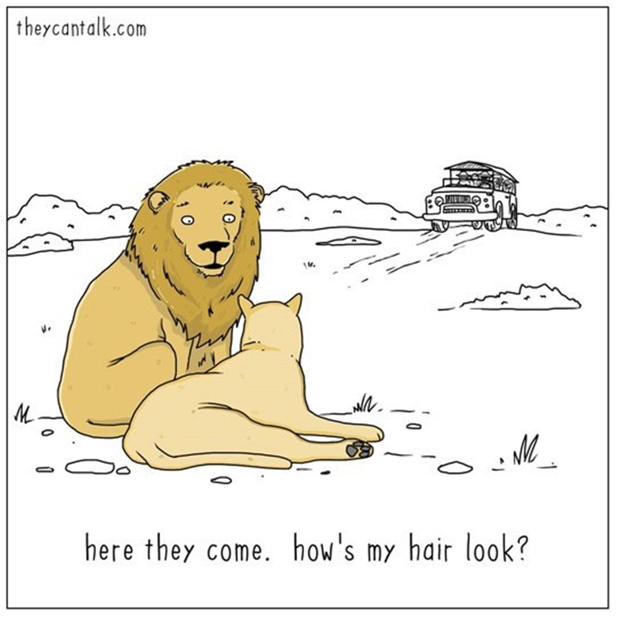 leoni capigliatura