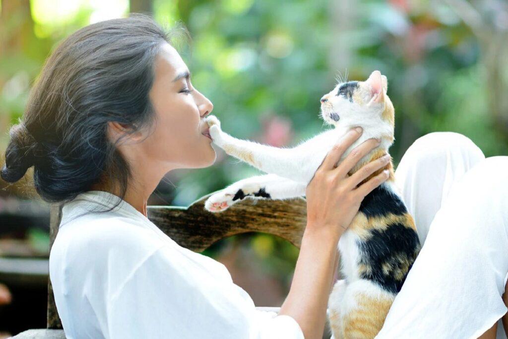 gattino preso in braccio