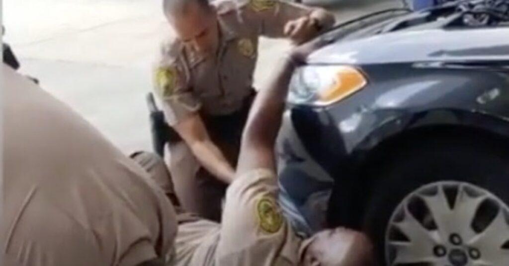 poliziotti salvano gattino
