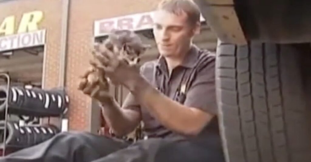 gatto incastrato in una macchina salvato da un meccanico