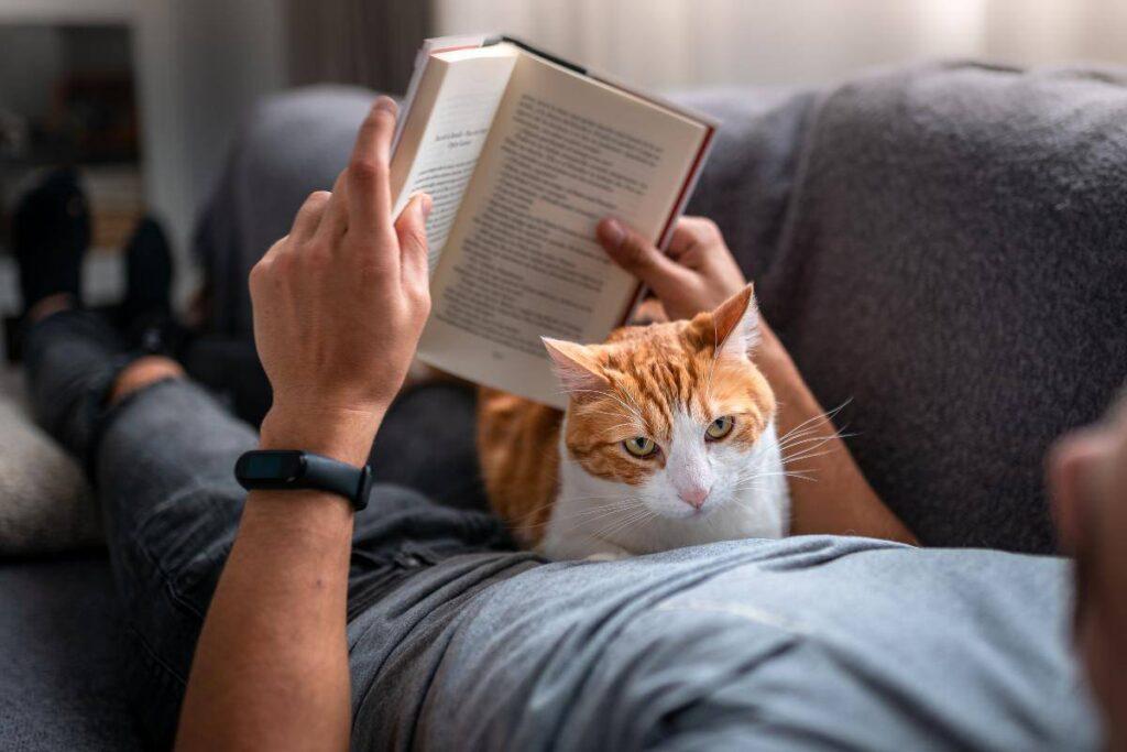 gatto sulla pancia del padrone che legge