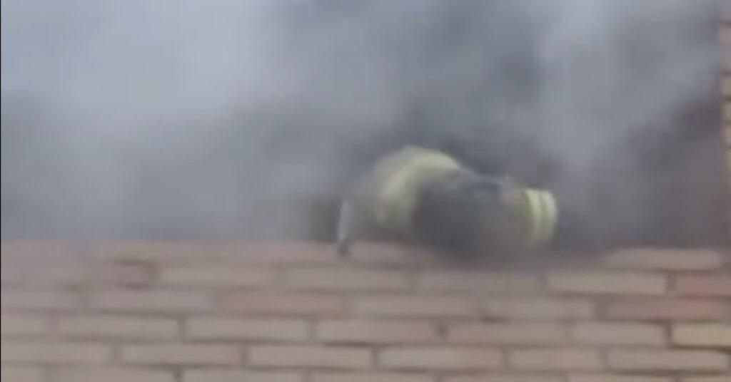 pompiere salva un gatto dalle fiamme