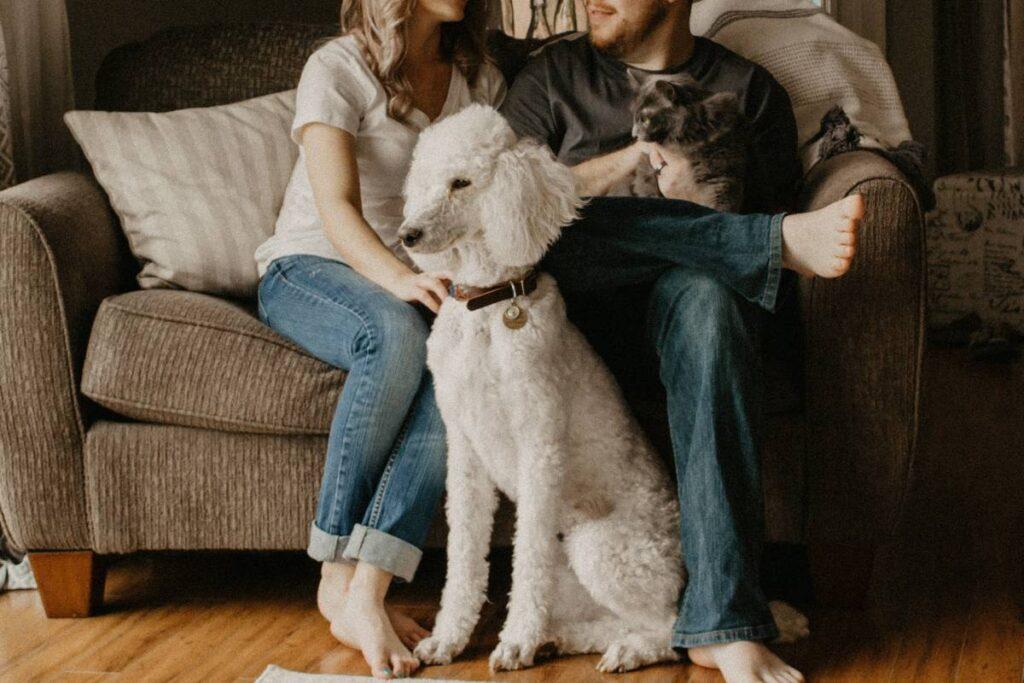 famiglia con cane e gatto