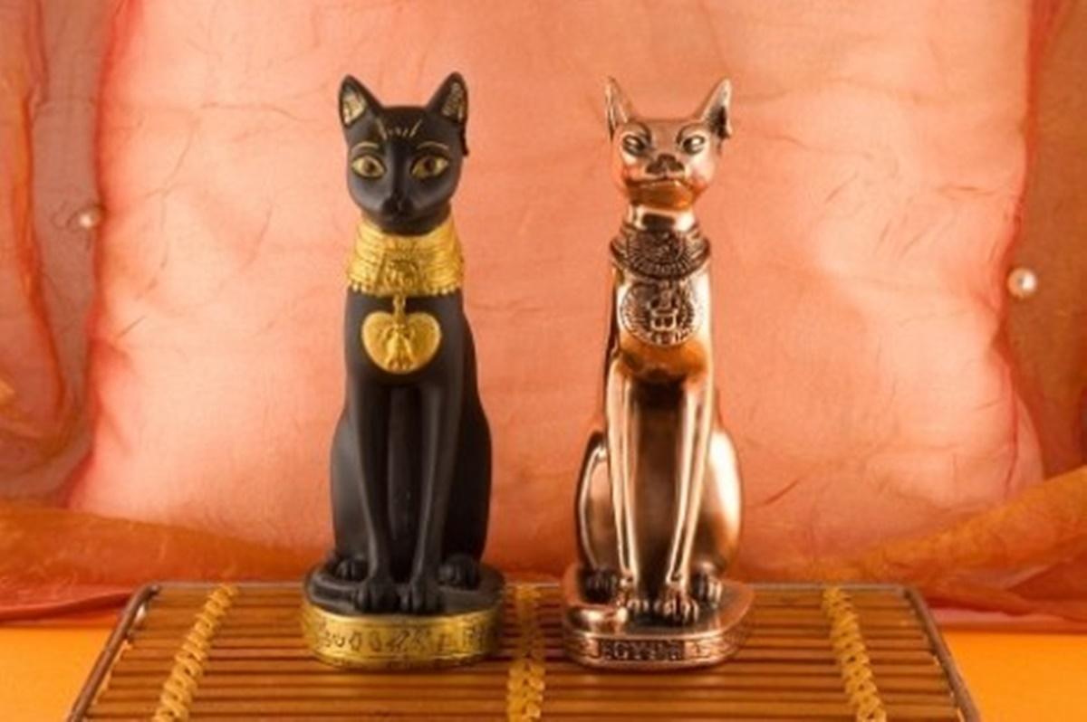 statue di gatti
