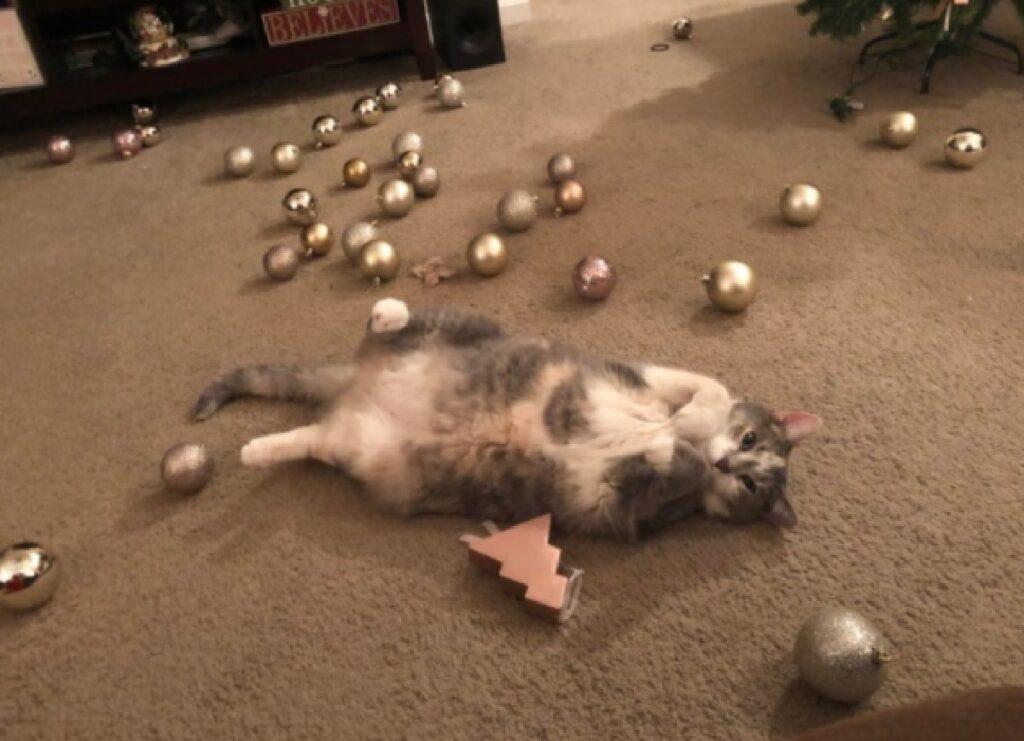 gatto palline albero di natale